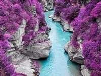 Flod genom en dal med purpurfärgade växter