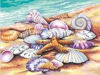 Malba mušlí a hvězdic na pláži