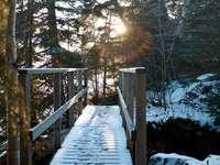 braune Holzbrücke über schneebedeckten Boden