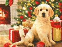 kleine hond bij de kerstboom