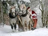 caballos con santa claus en proteína Tatra