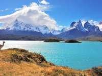 en la patagonia