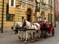 un paseo en carruaje en Cracovia