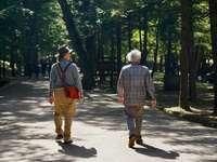 homme en chemise à carreaux bleu et blanc et pantalon marron