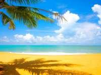 La playa en verano