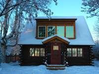 brunt trähus täckt med snö under dagtid