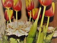 Tulipán és szegfű