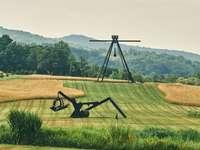tripé de câmera preto e cinza em campo de grama verde