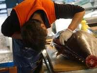 homme en t-shirt orange et pantalon noir tenant un poisson noir