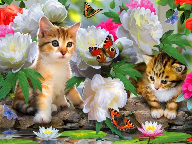 Gatinhos fofos - Doces gatinhos, flores, borboletas (10×8)