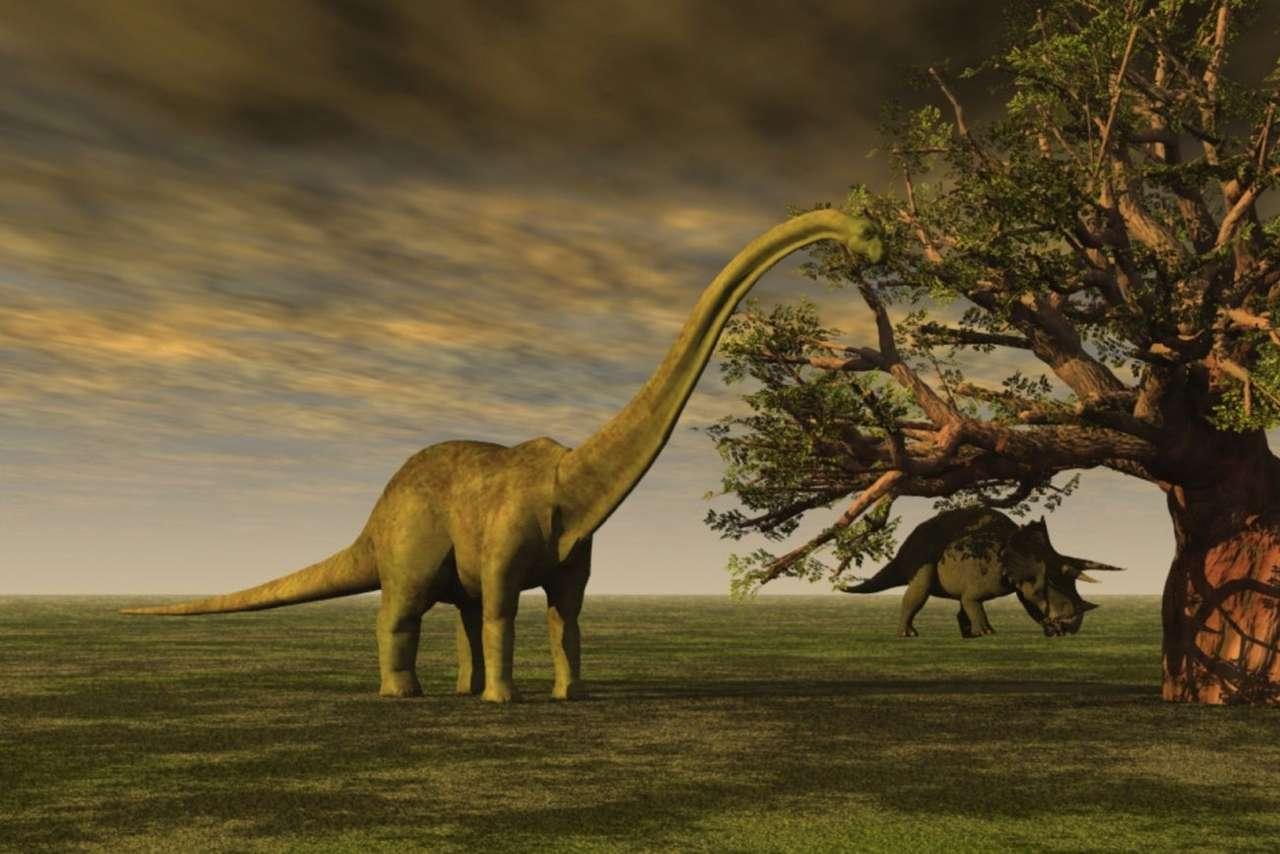 Brontosauro - Brontosauro, dinosauro (4×3)