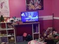 Фламинго геймплей по телевизията