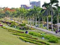 gente caminando en el campo de hierba verde