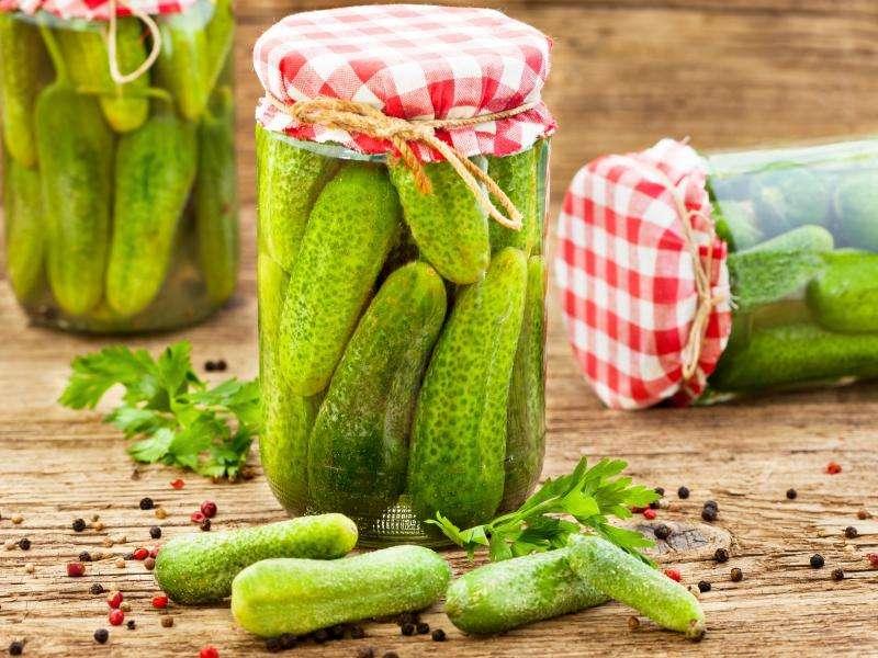 komkommers uit de pot