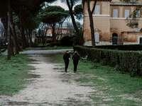 person i svart jacka som går på grå betongväg