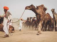 India.....