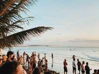 oameni pe plajă în timpul zilei