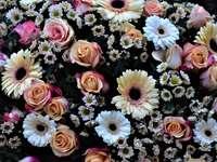 rózsaszín és fehér virágok a fekete textil