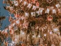 baloane albe și roșii pe copac maro