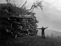 Graustufenfotografie des Mannes, der neben Waldhaufen steht
