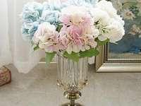 Pastell Hortensien