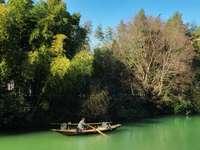 Barco blanco en el lago verde rodeado de árboles verdes