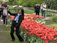 Tulipánový festival
