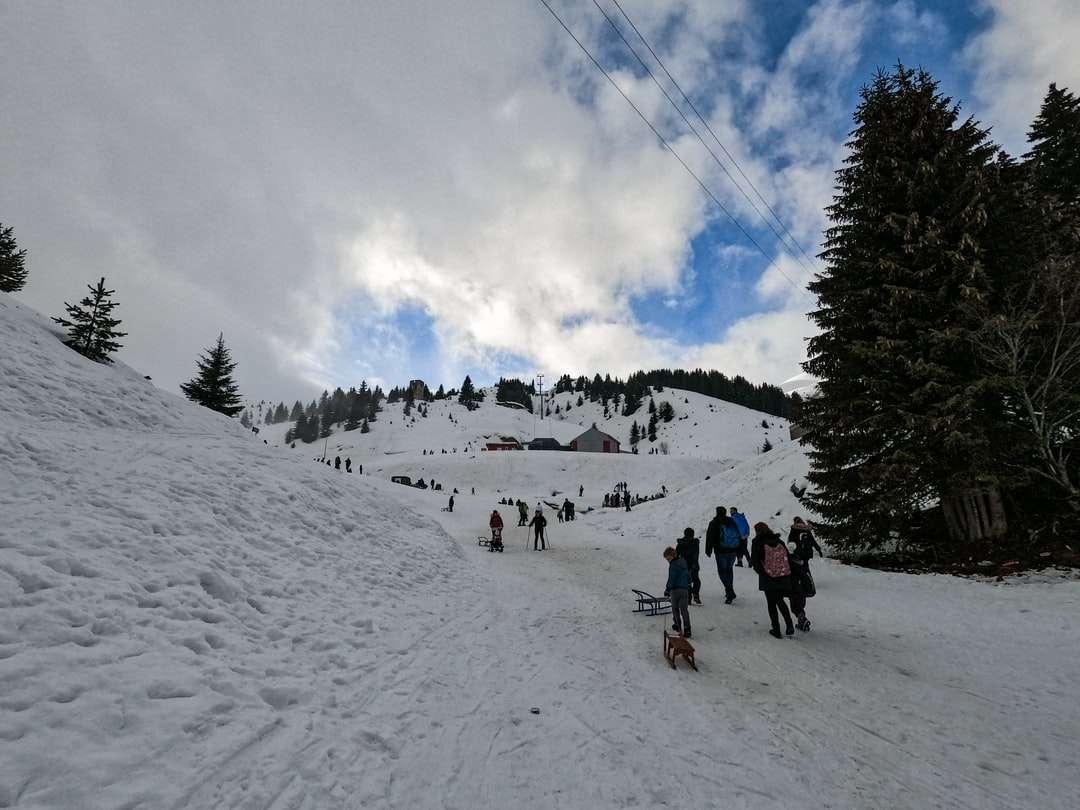 az emberek túrázás a hóval borított hegyen nappal - téli. Popova Šapka, Popova Shapka, Észak-Macedónia (12×9)