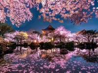 Peisaj japonez