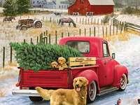 huis kerstboom