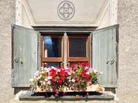 blue wooden door with flowers on top
