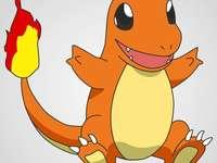Pokémon de feu