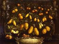 Bartolomeo Bimbi, Melangoli, cedros e limões, 1715