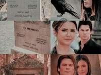 Damon a Elena