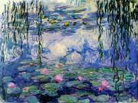 Waterlelies van Monet