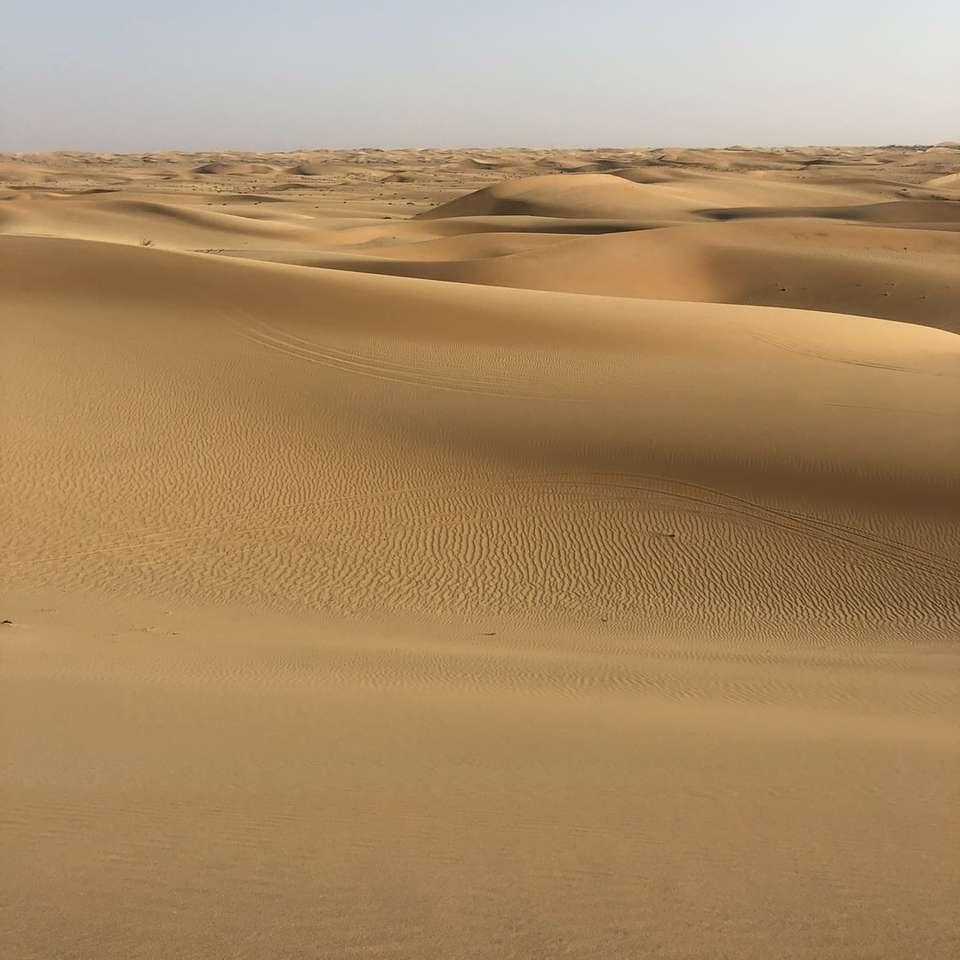 bruin zand onder witte lucht overdag - Dubai, Verenigde Arabische Emiraten (20×20)