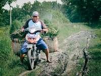 Homme en chemise grise à vélo sur l'herbe verte