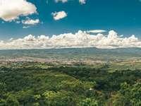 câmp de iarbă verde sub cer albastru și nori albi