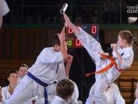 chinesische Kampfkunst