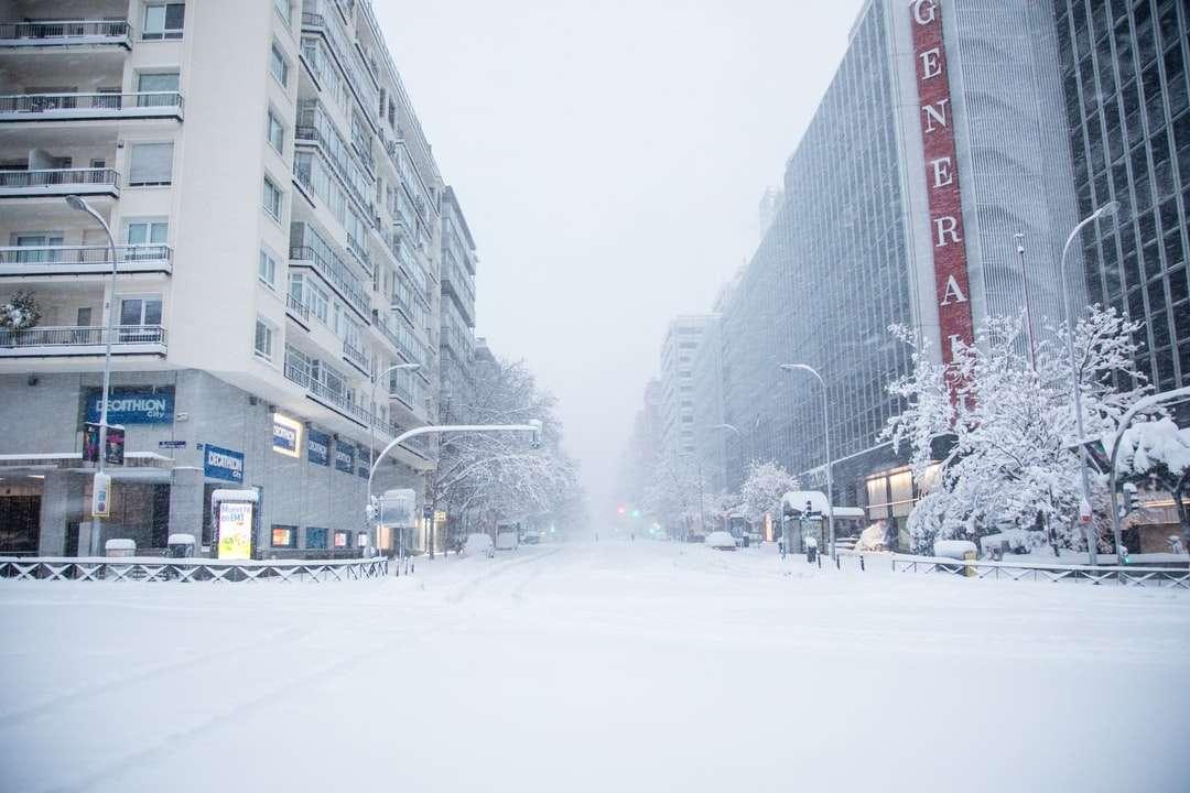 az emberek séta a hóval borított úton