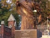 Pomník Jana Pavla II. V Rybniku