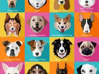 Verschillende honden.