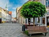 Medimurje Stadt in Kroatien