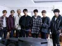 BTS Kpop chlapci miluji je