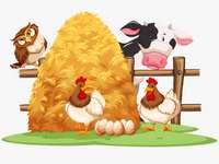 Zwierzęta i ptaki