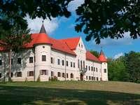 Zamek Luznica Chorwacja