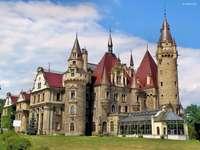 дворец- скротум