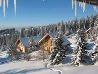 casas de madera en las montañas