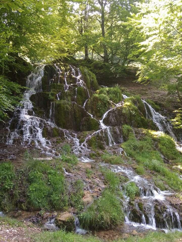 Izbucul Barcăului - Водопад през лятото (9×12)
