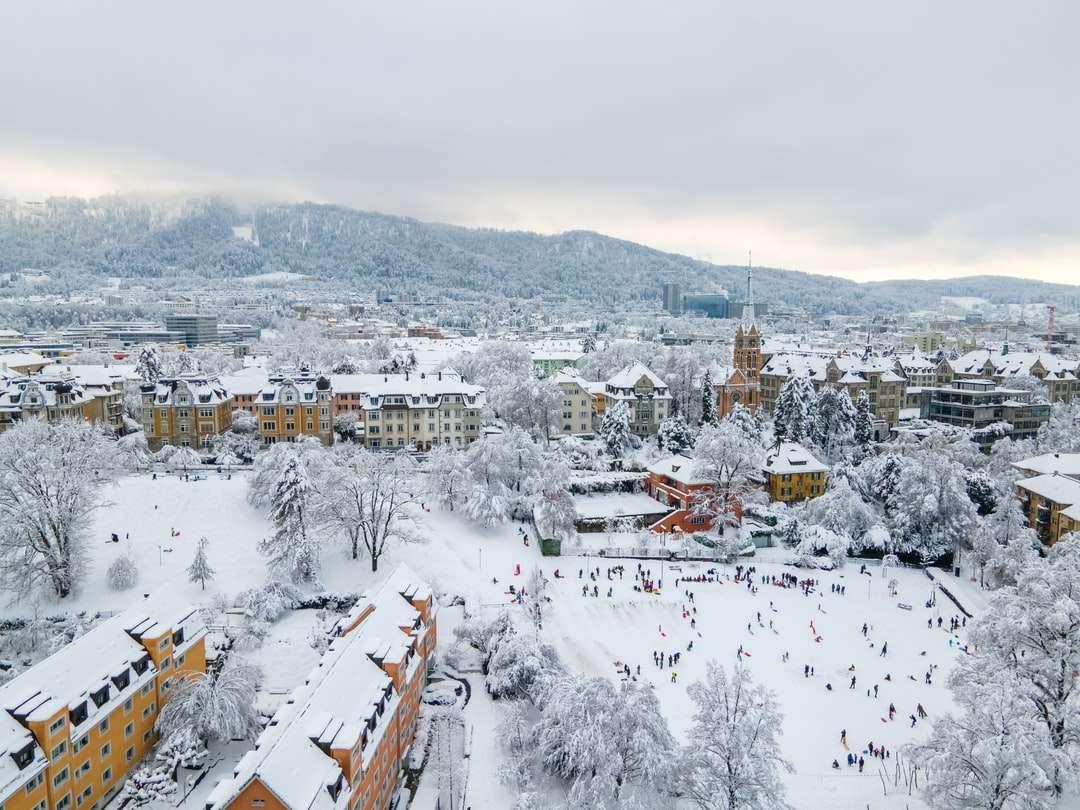 бели и кафяви къщи, покрити със сняг през деня - Цюрих през студения януарски ден след два дни непрекъснат снеговалеж. Колервизе, Цюрих, Швайц (4×3)